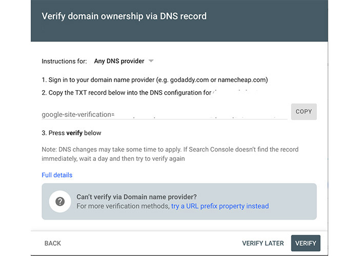 google search console DNS record verification
