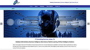 Dallas small business website development
